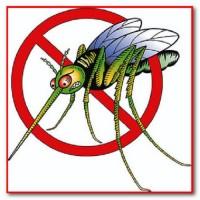 Спрей-репеллент от насекомых